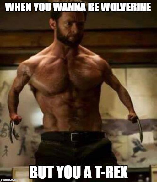 When You Wanna Be Wolverine Longan Meme