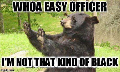 Whoa Easy Officer I'm Not Black Bear Meme