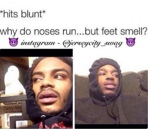 Why Do Noses Hit Blunt Meme