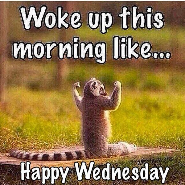 Woke Up This Morning Wednesday Meme