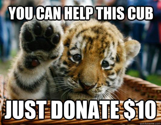 You Can Help This Cub Cub Meme