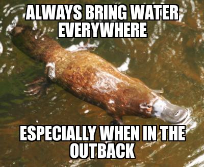 Always Bring Water Everywhere Platypus Meme