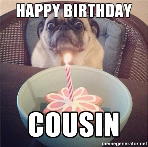 Happy Birthday Cousin Cousin Birthday Meme