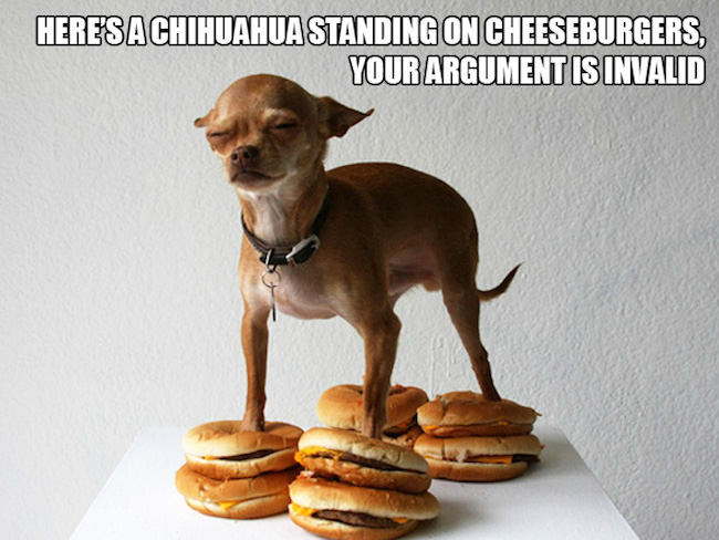 Here's A Chihuahua Standing Dogs Meme