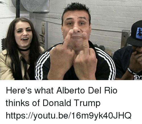Here's What Alberto Del Alberto Del Rio Meme