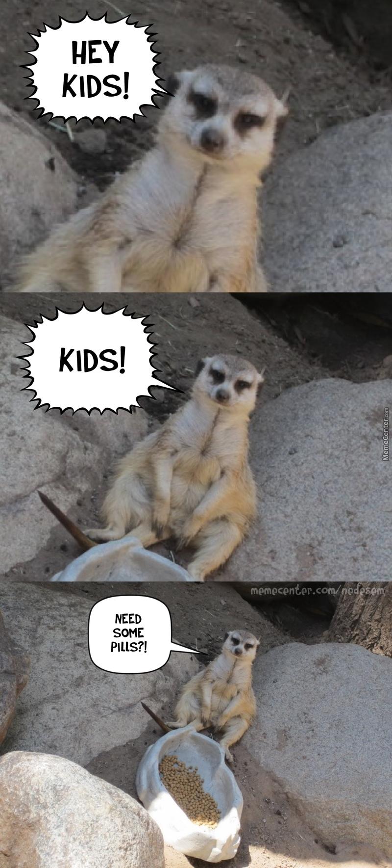 Hey Kids Need Some Mongoose Meme