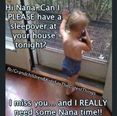Hi Nana Can I Grandchild Meme