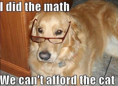 I Did The Math Dogs Meme