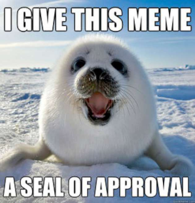 I Give This Meme Seal Meme