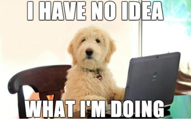 I Have No Idea Dogs Meme
