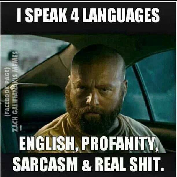 I Speak 4 Languages Funny Meme