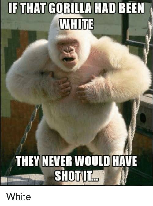 If That Gorilla Had Gorilla Meme
