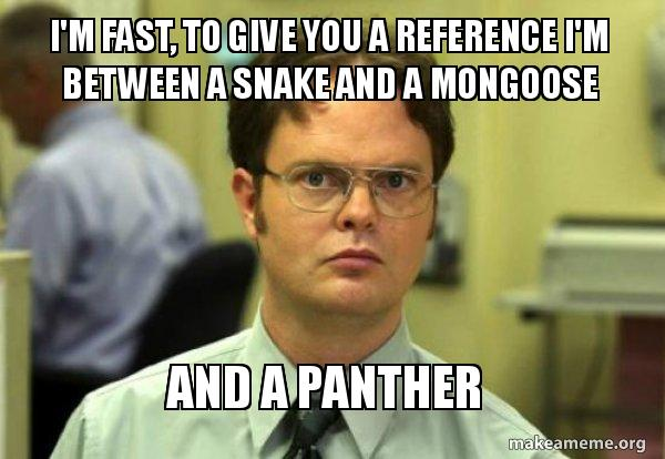 I'm Fast To Give Mongoose Meme