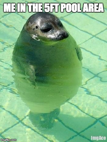 Me In The 5ft Seal Meme