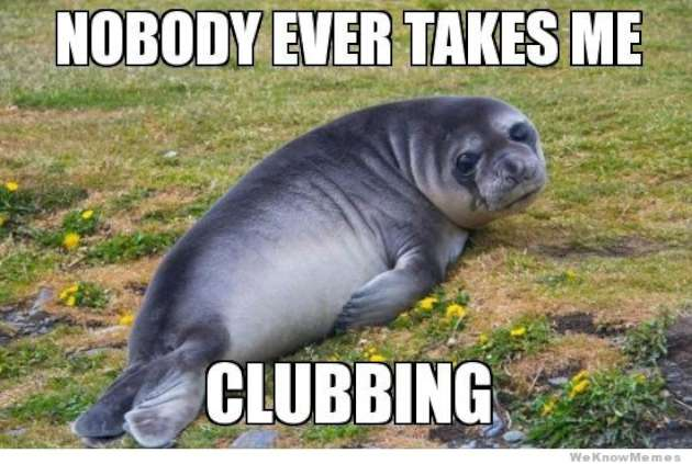 Nobody Ever Takes Me Seal Meme