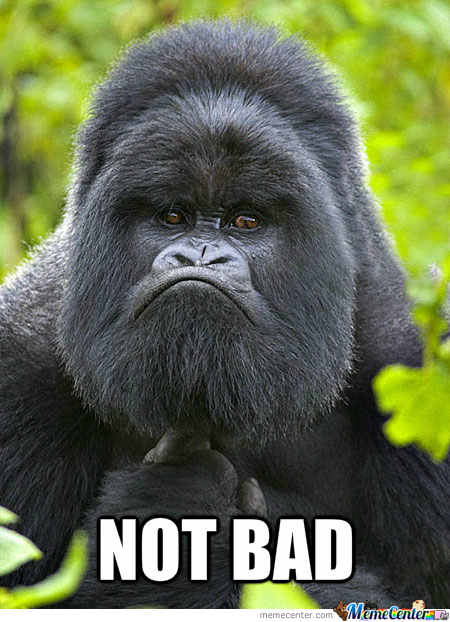 Not Bad Gorilla Meme