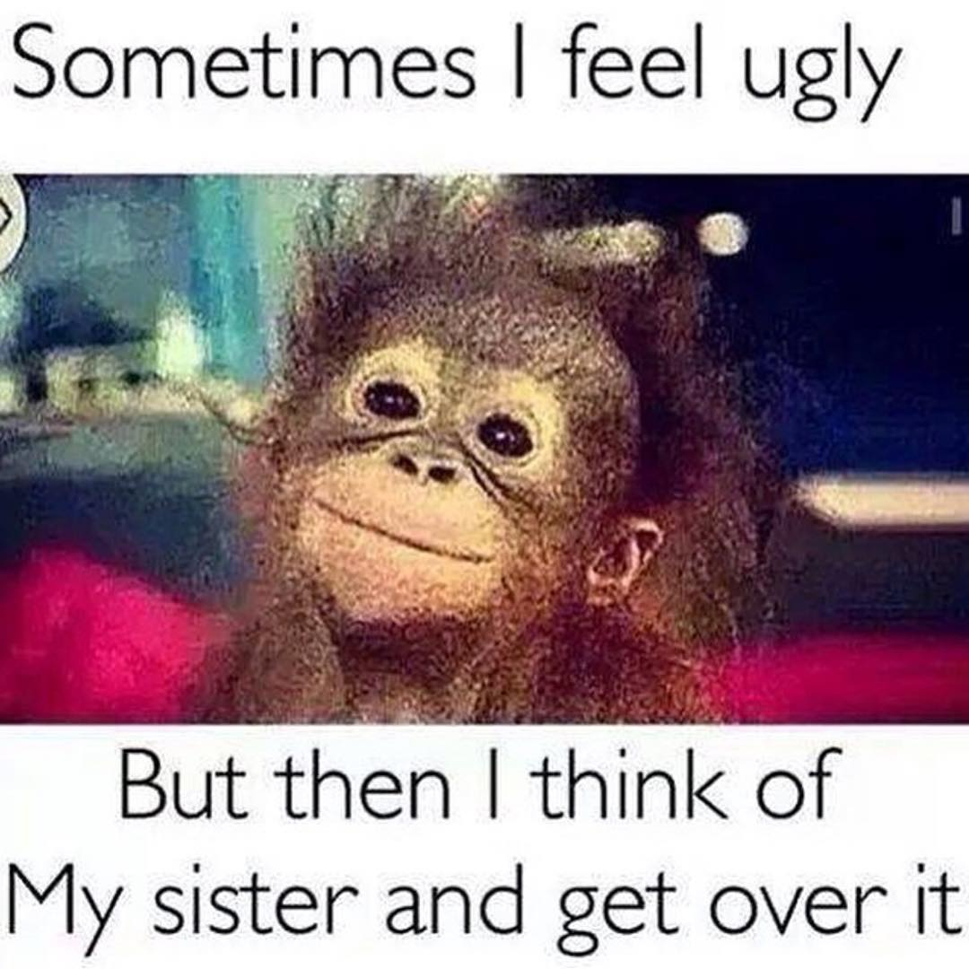 19 Funny Sister Meme That You Never Seen Before | MemesBoy