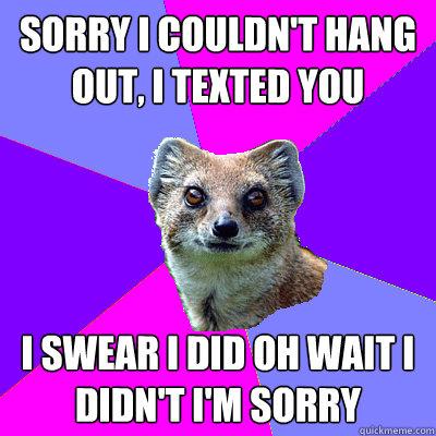 Sorry I Couldn't Hang Mongoose Meme