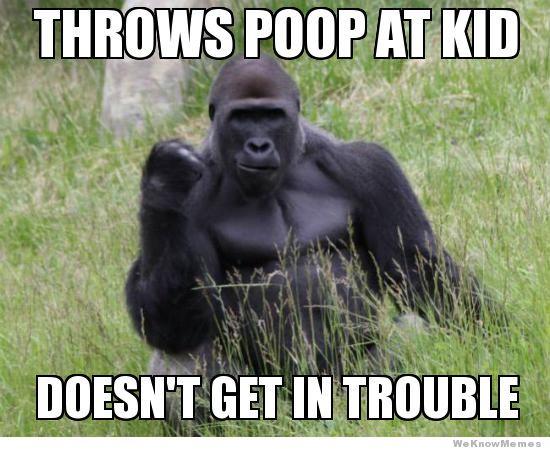 Throws Poop At Kid Gorilla Meme