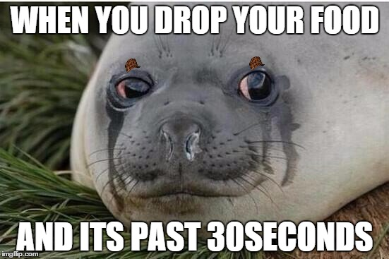 When You Drop Your Seal Meme