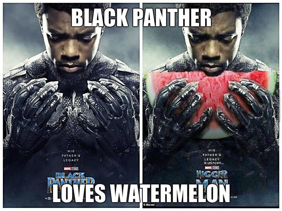 Black Panther Loves Watermelon Black Panther Meme
