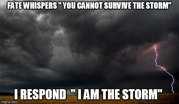 Fate Whispers You Cannot Storm Meme