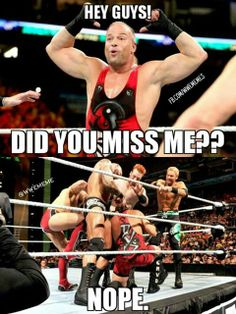 Hey Guys! Did You Rob Van Dam Meme