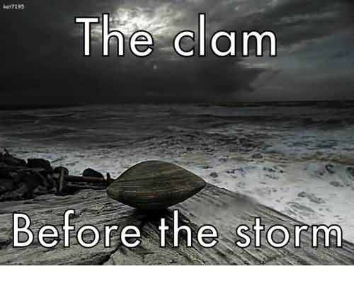 The Calm Before The Storm Storm Meme