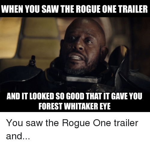 When You Saw The Rogue Rogue Meme