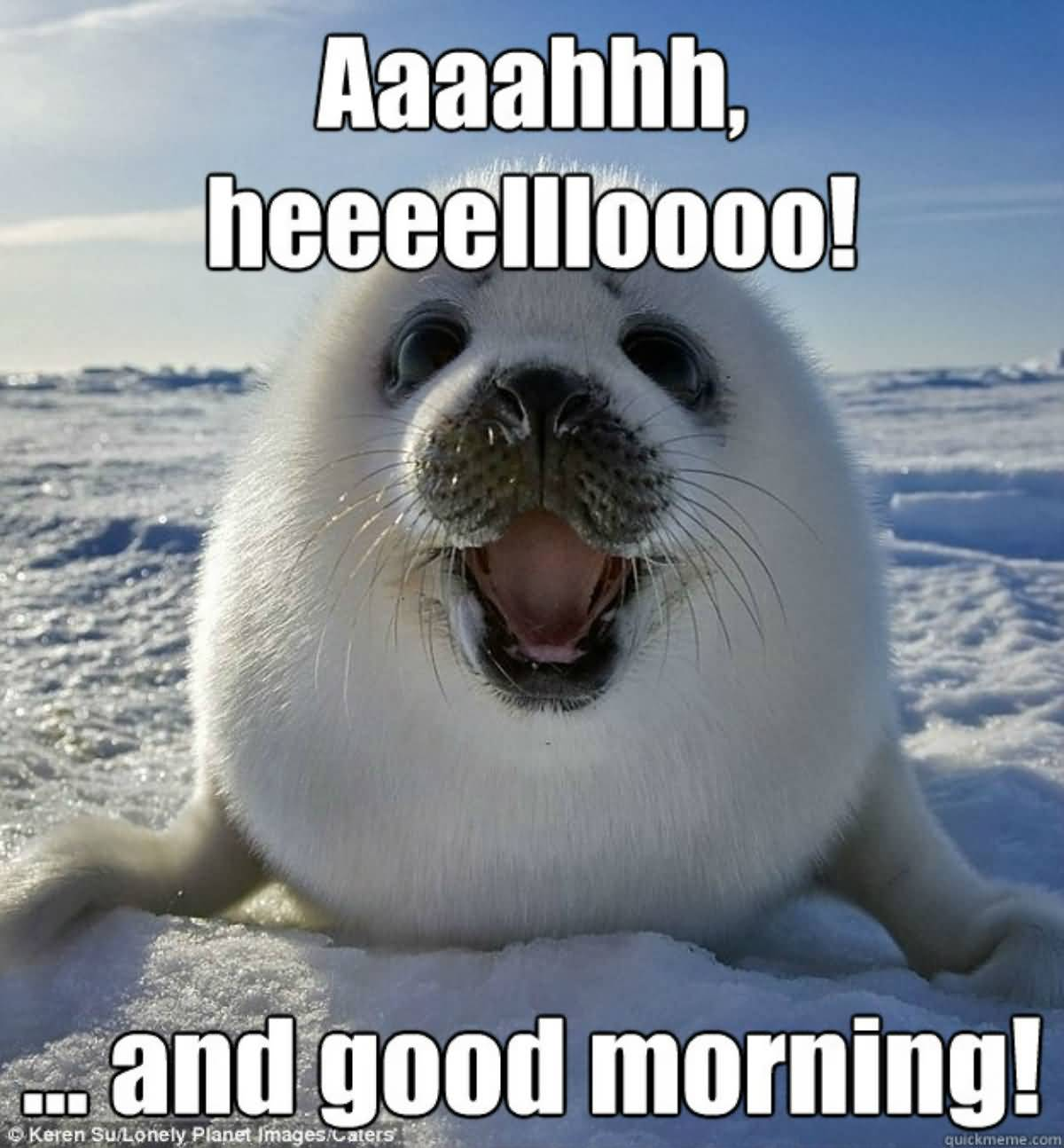 Aaaahh Heeeelloooo! And Good Morning! Good Day Meme