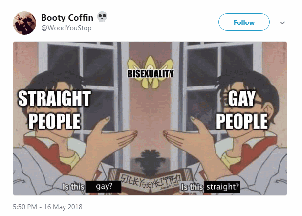 Bisexuality Is This Gay Butterfly Meme