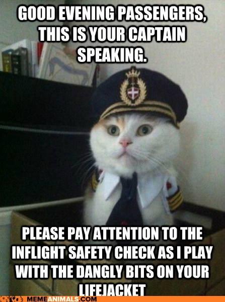 Good Evening Passengers This Is Good Evening Meme
