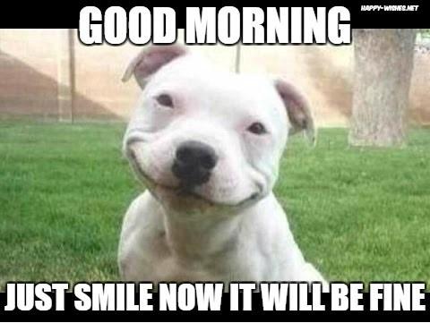Good Morning Just Smile Now Good Day Meme
