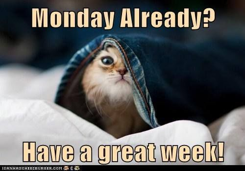 Monday Already Have A Great Week Good Week Meme