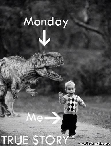 Monday Me True Story Good Week Meme