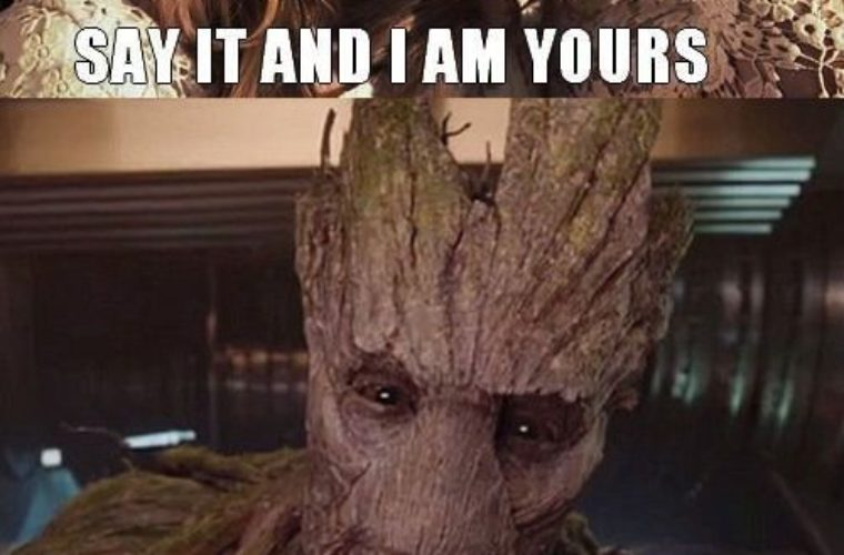 Say It And I Am Groot Meme