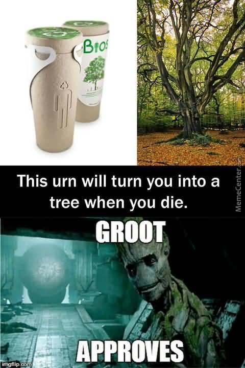 This Urn Will Turn Groot Meme