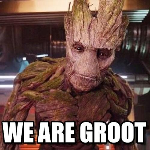 We Are Groot Groot Meme