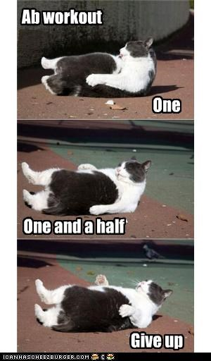 Ab Workout One One And A Half Abs In A Day Meme