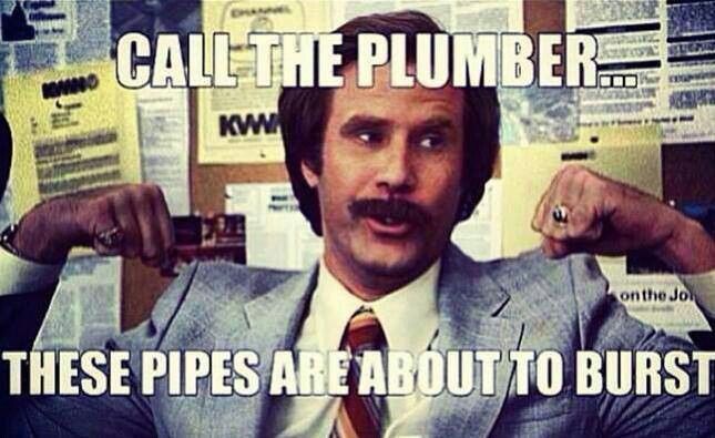 Call The Plumber These Pipes Arm Day Meme