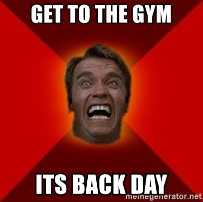 Get To The Gym Its Back Day Meme