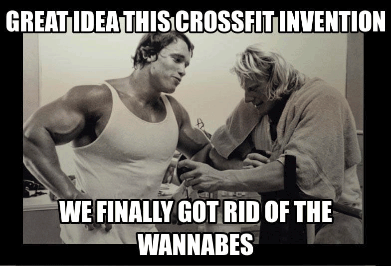 Great Idea This Crossfit Back Day Meme