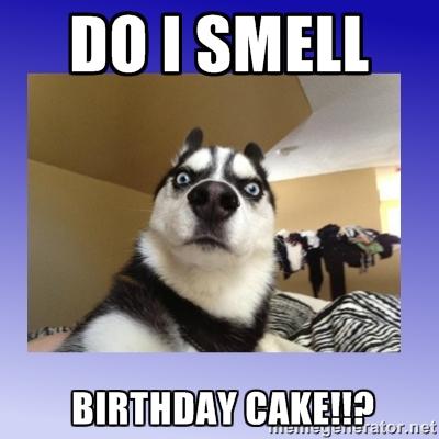 19 Funny Birthday Cake Meme You Never Seen Before