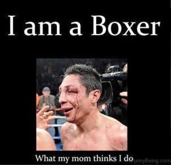 I Am A Boxer Boxing Meme